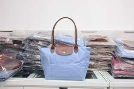 2e7f9b944ea05f Longchamp Le Pliage Long Handle Small Lilac Blue 2605 089 A30 (1)